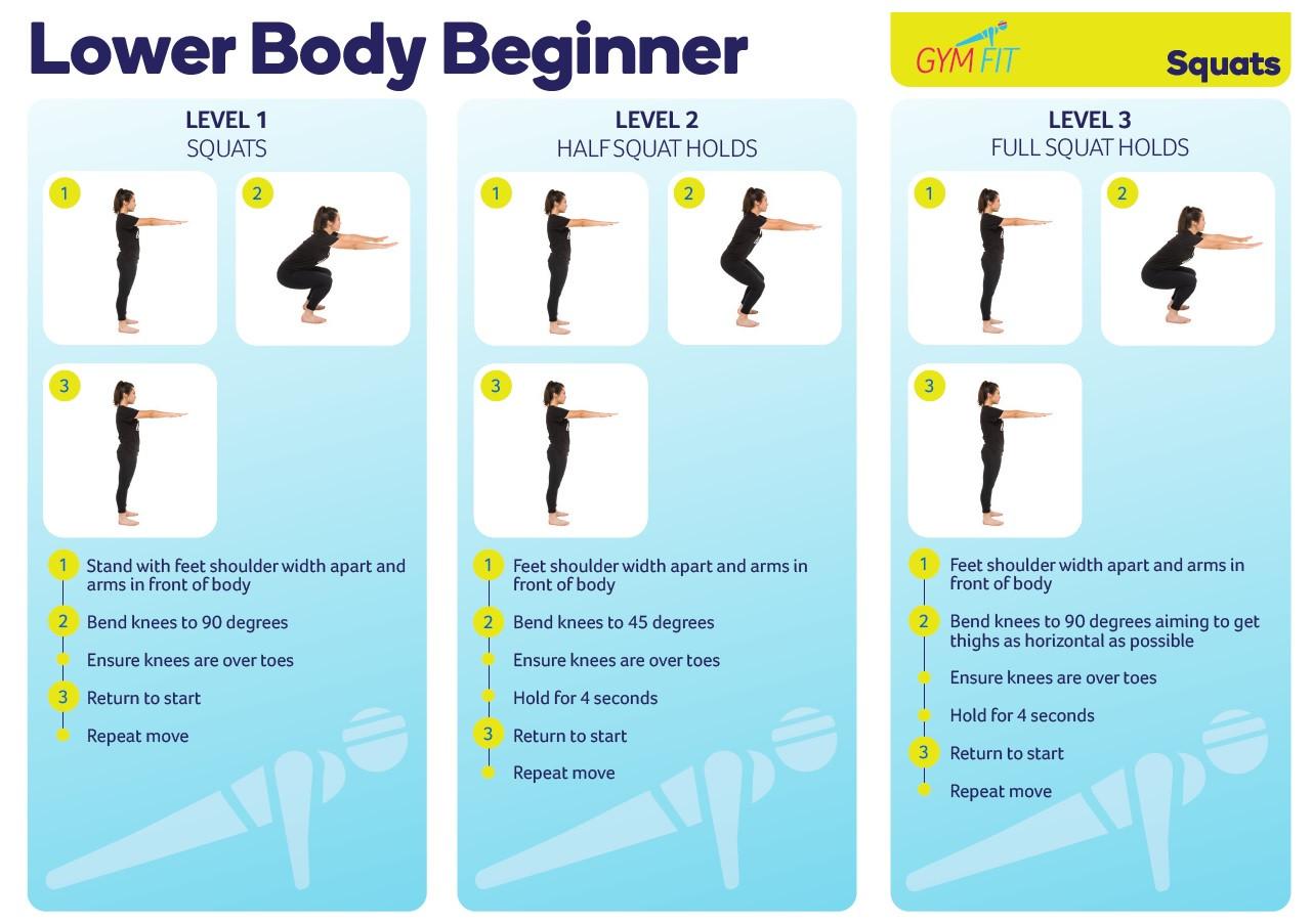 Lower Body Beginner