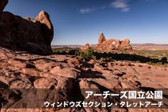 kotei4-10.jpg