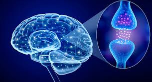 Antioxidants for Parkinson's Disease