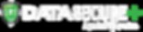 DSP_logo_EXPERIAN_whiteletter.png