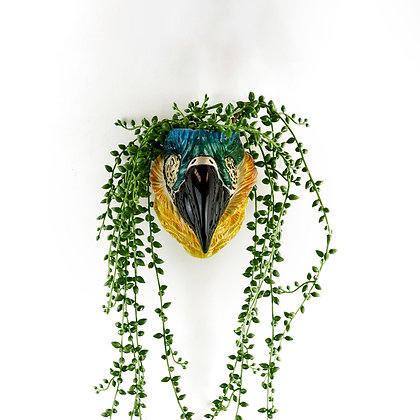 Ceramic Macaw Parrot Wall Vase