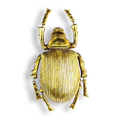 Gold Striped Beetle Wall Decor