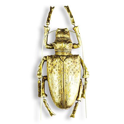 Gold Longicorn Beetle Wall Decor