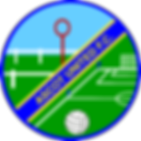 Ascot_United_FC.png