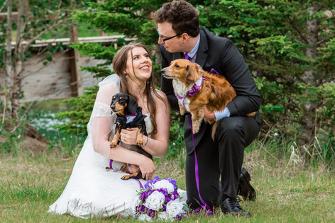 Bride and groom looking at each other with their wiener dogs in wedding attire.