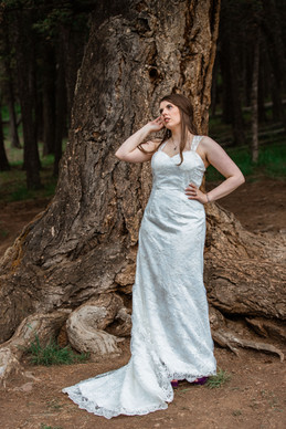 Bride standing near a huge tree at Banff National Park