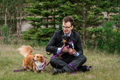 Groom with his wiener dogs in wedding attire at Cascade ponds.