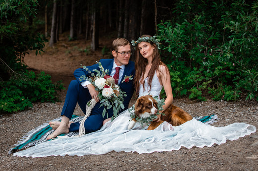 Bride and groom sitting in front of the trees with her dress spread out and their dog is beside her lap.
