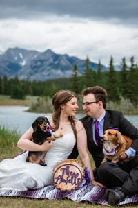 Bride and groom with their wiener dogs looking into each others eyes. Having a picnic at Cascade ponds.