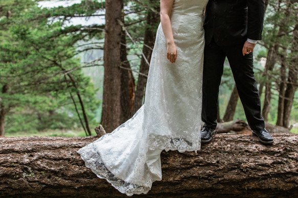 Bride and groom standing on a huge log showing the bottom of the brides dress and the grooms suit and shoes