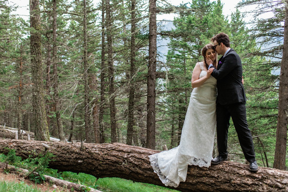 Bride and groom standing on a huge log and the groom is holding the brides face