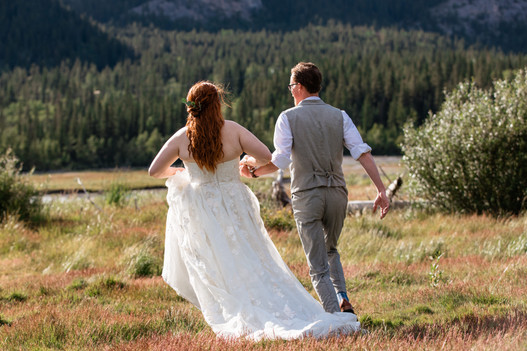 Picture of the bride and groom from behind running through the grass.