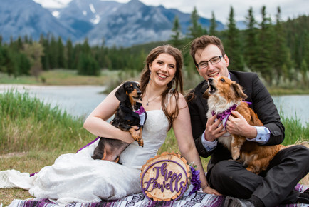 Bride and groom with their wiener dogs having a picnic on a blanket displaying a sign of the new last name they are both taking.