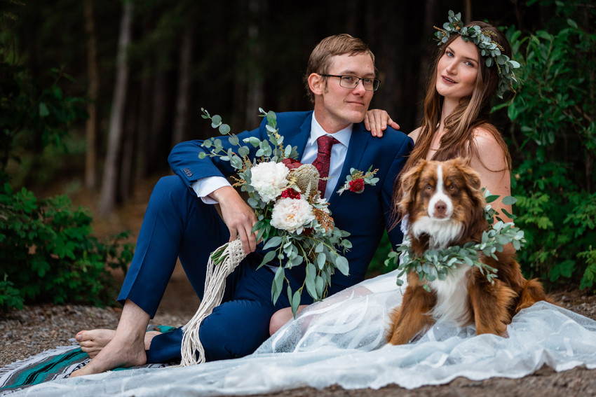 Bride and groom sitting down in front of the trees with their dog.