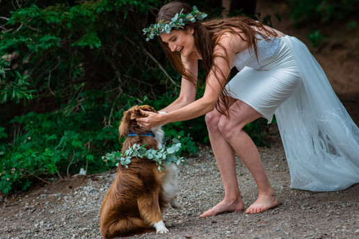 Bride bending down to pet her dog who is wearing a floral wreath.