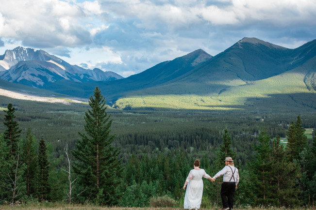 Bride and groom standing looking out over the trees and mountains, holding hands.