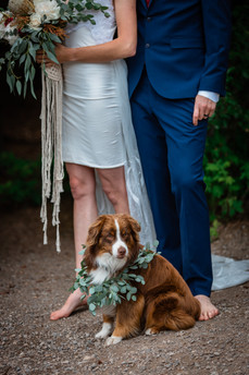 Bride and groom standing in front of the trees with their dog.