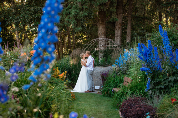bride and groom kissing in a beautiful garden.