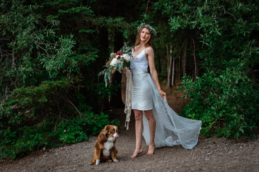 Bride posing in front of the trees with her dog.