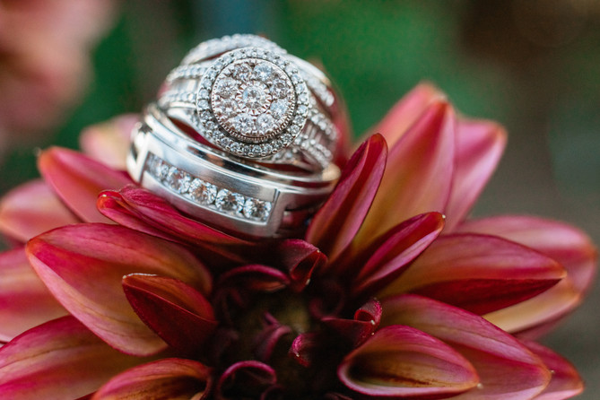 bride and grooms rings up close on a beautiful flower.