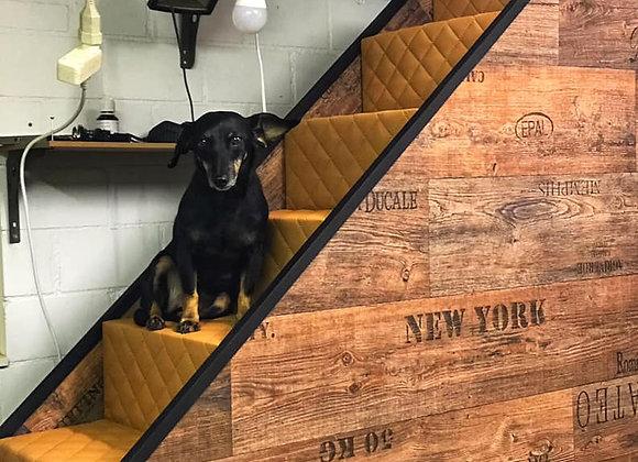 Hundetreppen 6 Stufig für Betten  / Vintage Look