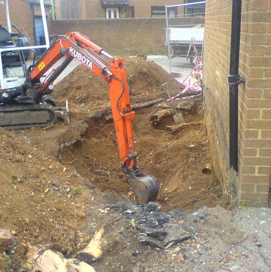 Mini Digger Excavation. Tree root extraction