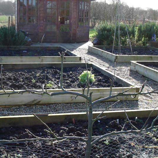 Allotment garden sleeper beds