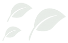 Leaves logo faded 12pcnt.png
