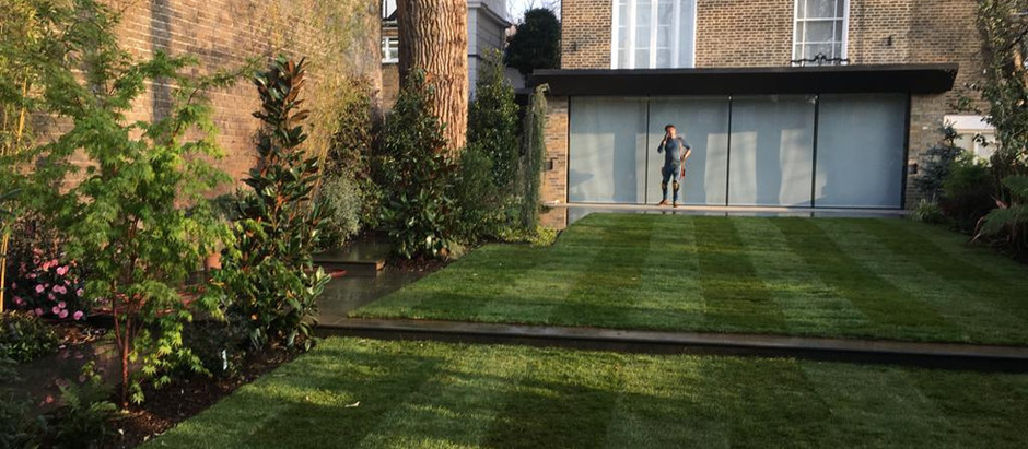 How to make your neighbours think your grass is always greener!