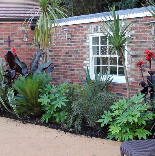 Tropical planting garden design plan