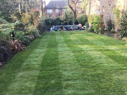Reinforced sloped lawn