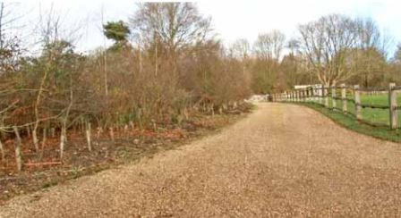 Long sweeping hoggin driveway with wildlife corridor and rustic oak fence