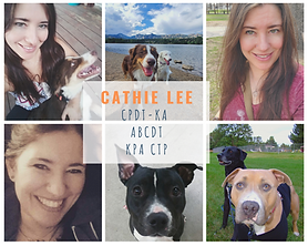 Cat Lee Collage.png