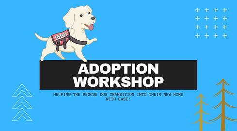adoption workshop.png