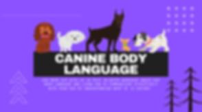 CANINE BODY LANGUAGE WORKSHOP.png