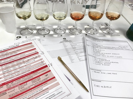 WSET - back to school (#3)