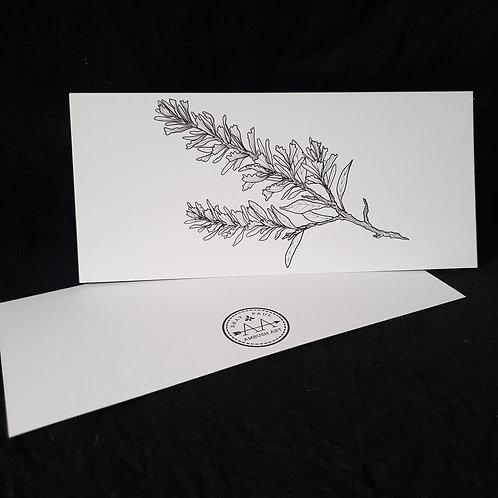 Artemesia tridentata Unique Card