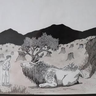 By the Child's Eye: Deforestation