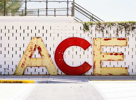 ACE - Do you have what it takes?
