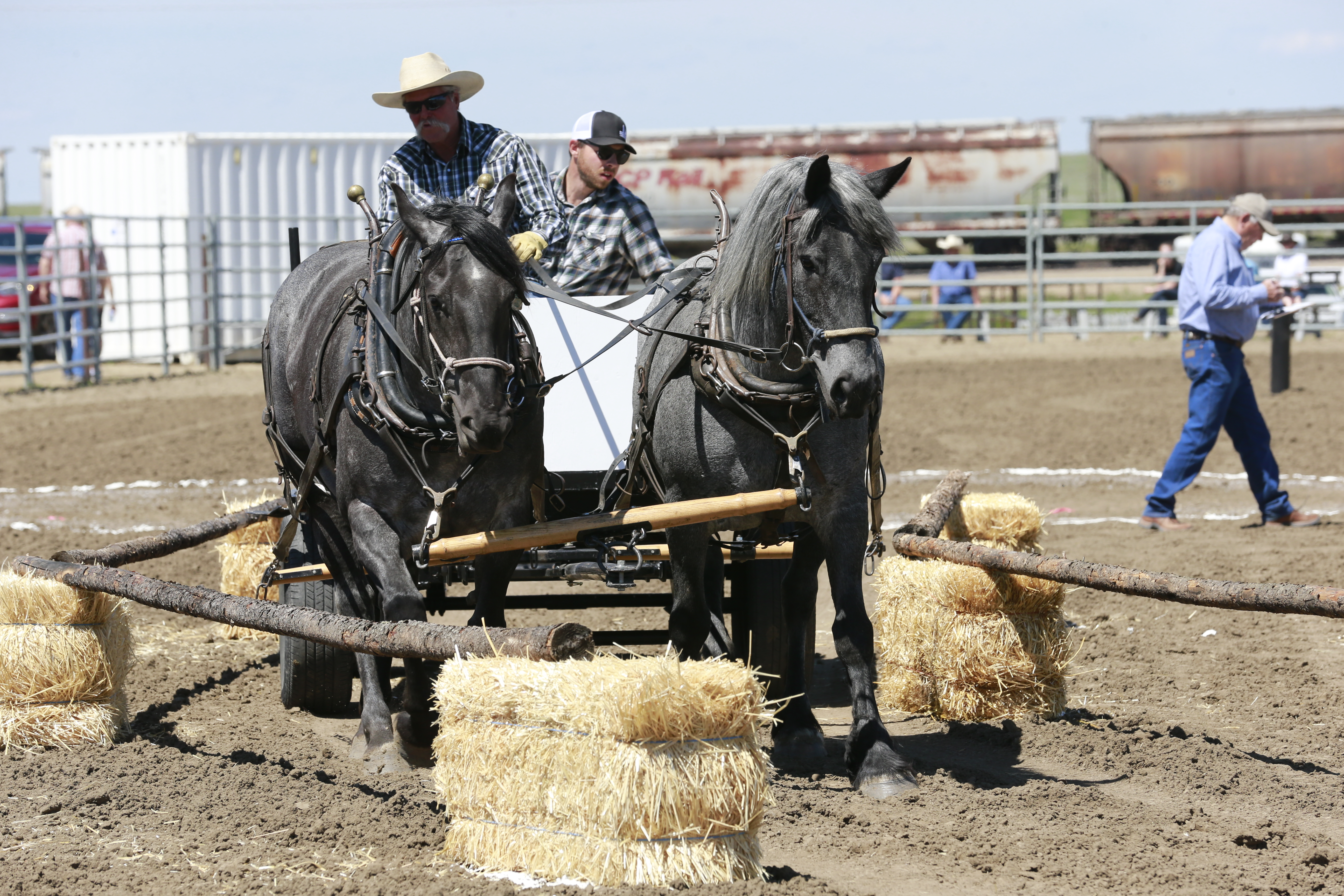 Chore Horse Competition