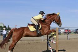 English Equestrian Clinic