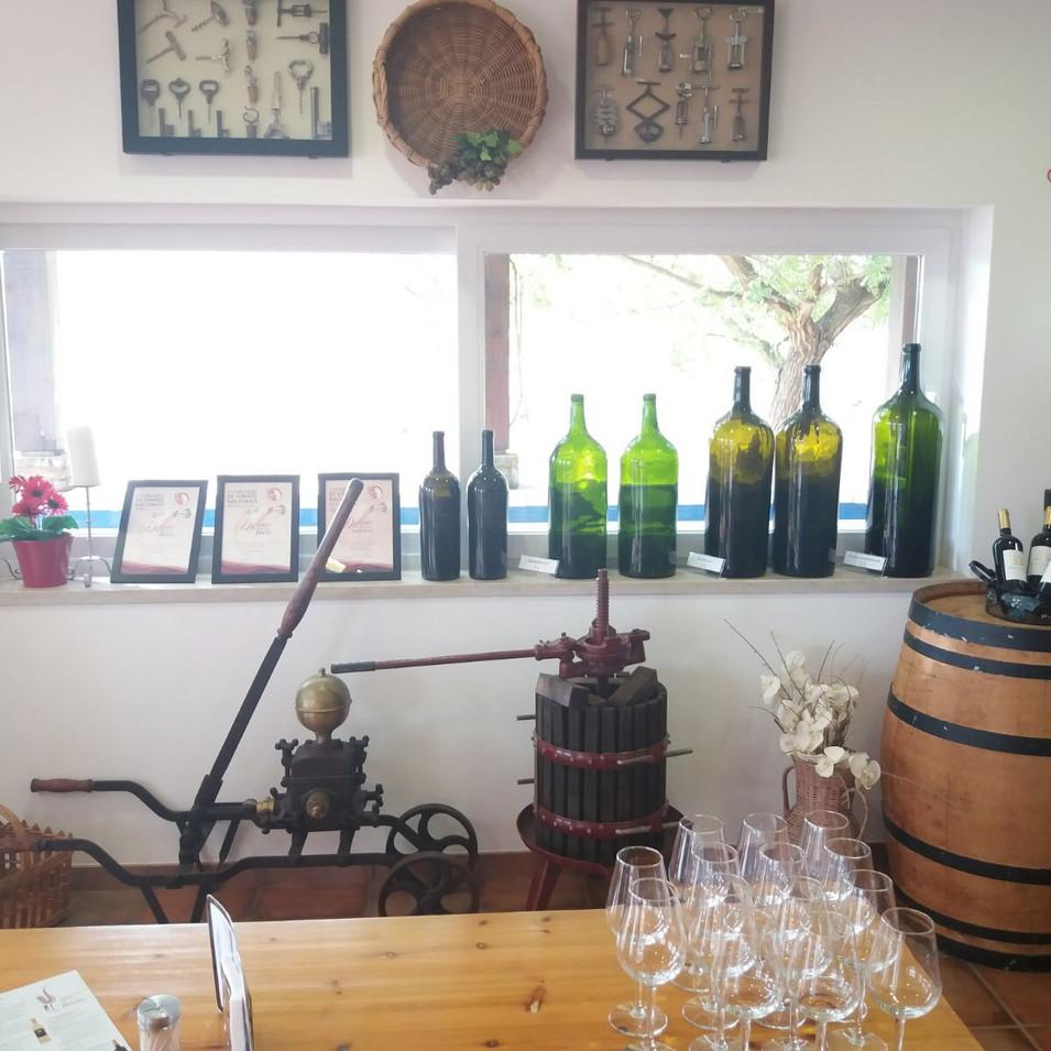 Algarvian Premium Wine testing tour