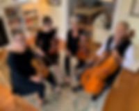 Opal String Quartet.jpg
