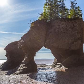 09-2017 Nova-Scotia-4999.jpg