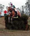Super at Copper Meadows last outing.jpg