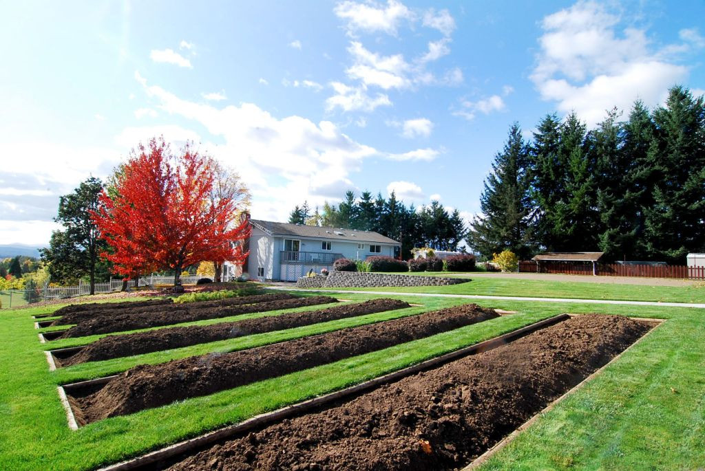 25 Raised Garden Beds & Valley View.JPG