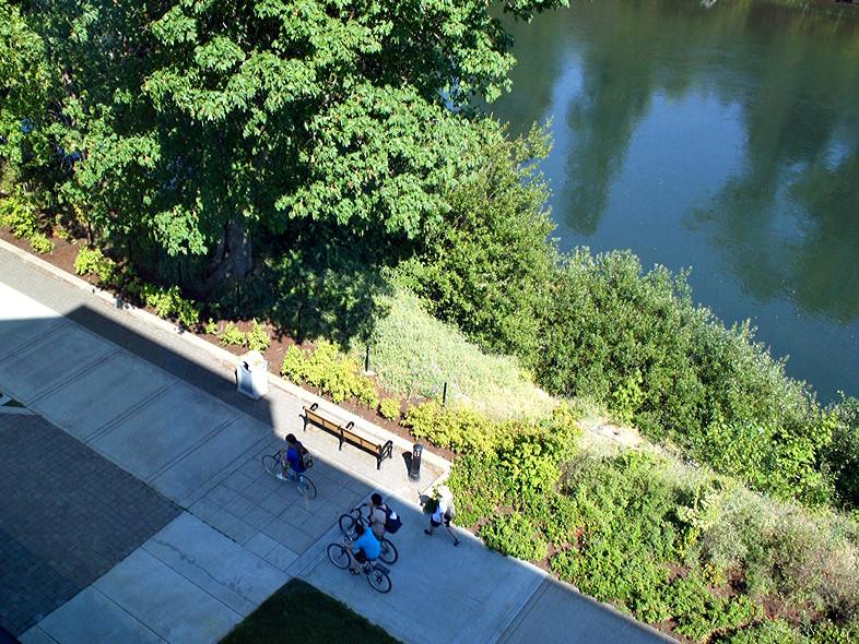 28 Bike Path from Rooftop.jpg