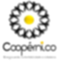 Coopernico_logo vertical small.png