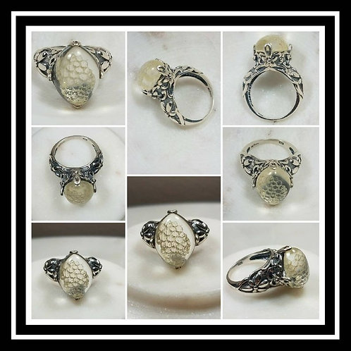 Ornate Oval Bearded Dragon Skin Shed Sterling Silver Ring