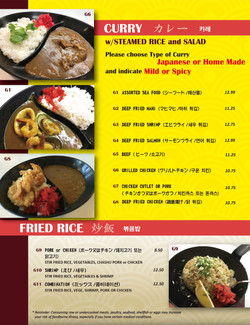 Curry ~ Fried Rice